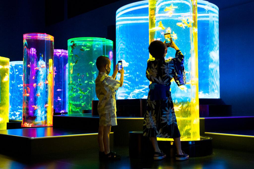 アートアクアリウム美術館 夏休みに学んで体験できる「アートプログラム」