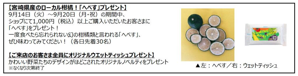 ニュウマン新宿2Fエキナカ「LUMINE AGRI SHOP」