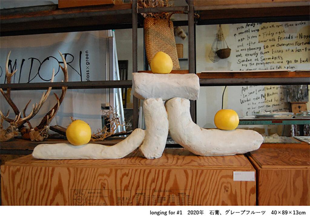 横浜市民ギャラリーあざみ野 對木裕里個展「ばらばらの速度」